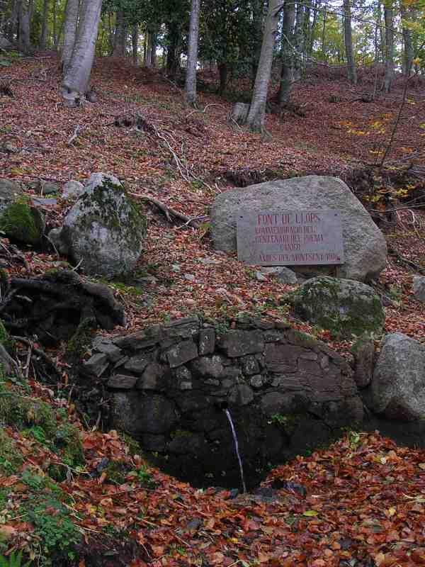 Les fonts del montseny for Les piscines del montseny